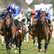 Handicappers' Blog (24 April)
