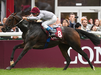 Treve Feature