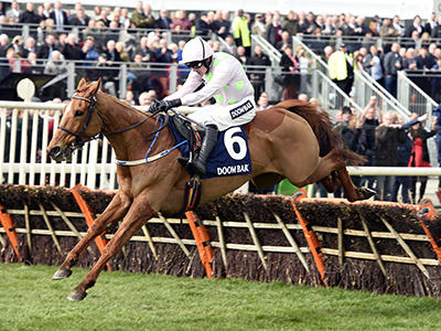 Annie Power to miss Cheltenham