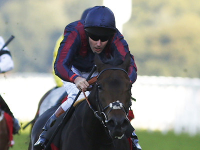Queally hopes Man can be his Diamond