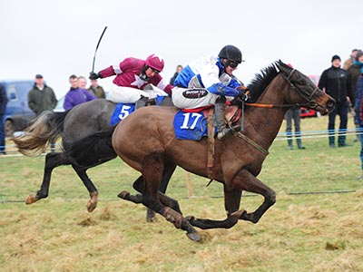 Irish Point to Point feature