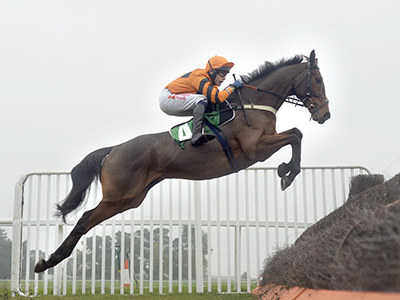 Thistlecrack ruled out of Cheltenham