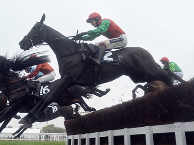 Taquin strikes gold at Cheltenham