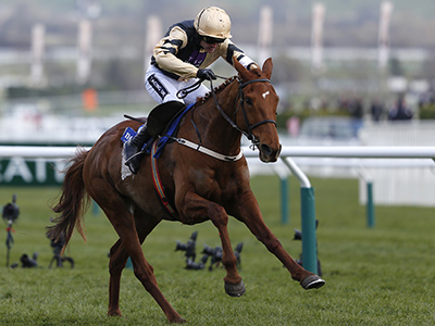 Yorkhill stays unbeaten over fences