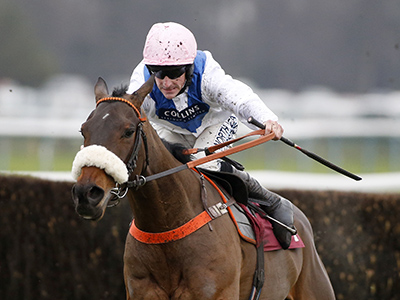 Patiently Cheltenham bid rests on ground