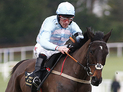 Irish Arkle win for Arkle bound Plan