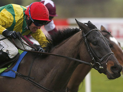 Harrington delighted with Sizing John