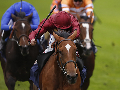 Duo head for Ascot Gold Cup