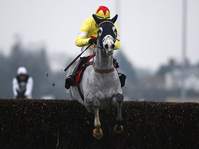 Aintree an option for Politologue