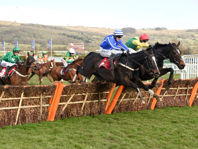 Penhill wins the Stayers' Hurdle