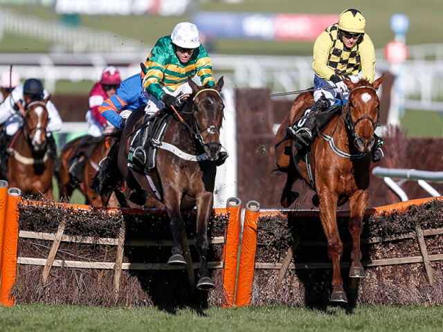 Buveur D'Air wins the Champion Hurdle