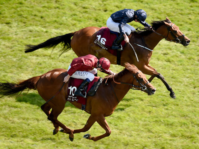 Rhododendron wins the Lockinge Stakes