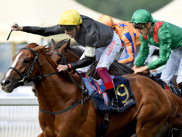 Stradivarius wins the Ascot Gold Cup