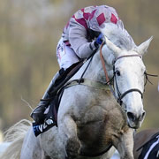 fitzy's focus: smad place