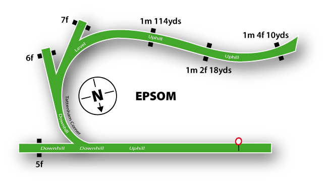 Epsom Downs Flat Racing