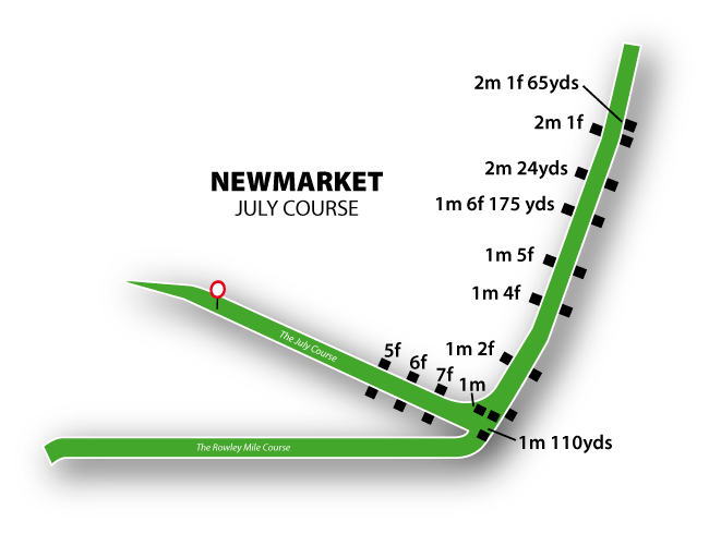 Newmarket Flat Racing (July)