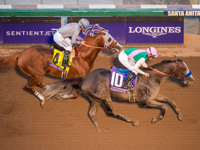 ATR to broadcast exclusive live coverage of the Pegasus World Cup Invitational