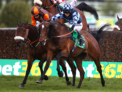 Bet365 Gold Cup Stats Guide