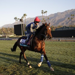 Aktabantay out of Breeders' Cup