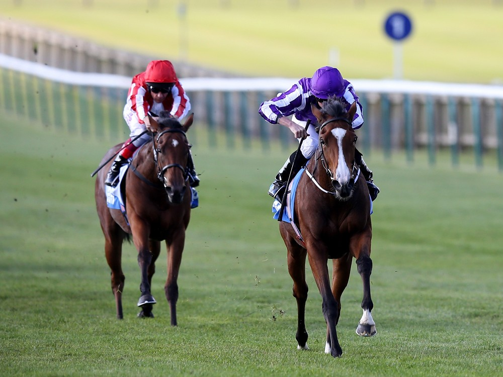 'Truly exceptional' Minding has Ryan Moore purring after Fillies' Mile
