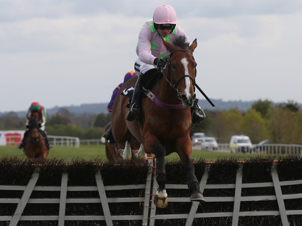 Faugheen fighting fit for Punchestown return