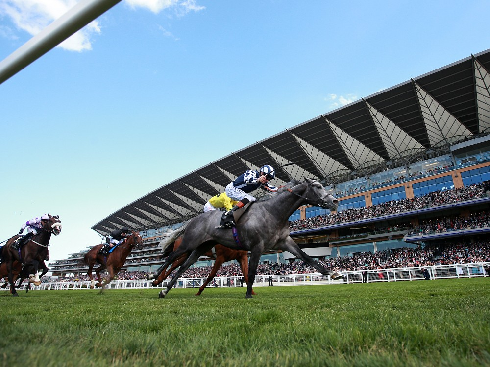 Andreas Wohler on Ascot weather watch for Cup contender Alex My Boy