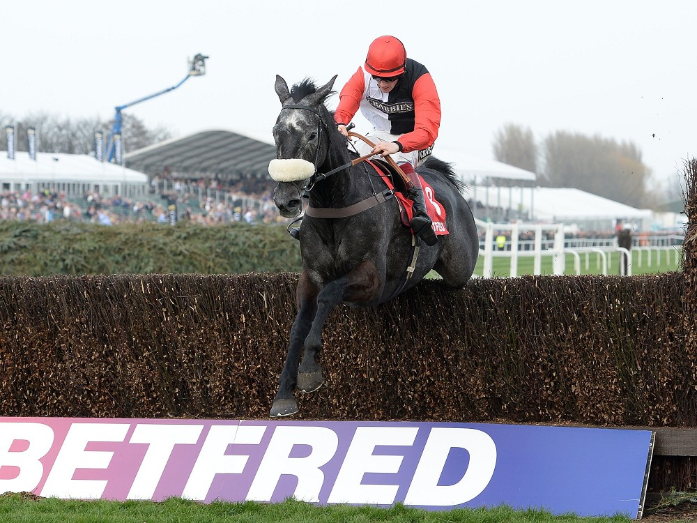 Owner Andy Stewart outlines Auteuil hurdles option for Saphir Du Rheu