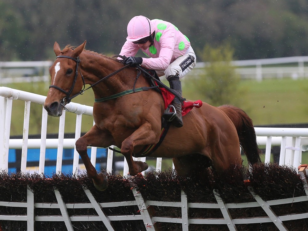 Annie Power 'looks great' with Hatton's Grace and Mares' Hurdle on the agenda