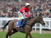 Hennessy robbed of star turn as Coneygree misses race
