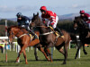 Micky Hammond not afraid of Champion Chase challenge with Just Cameron