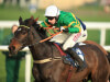 Winter Escape on Aintree trail following Doncaster victory for Alan King