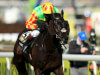 Tom George happy as Saint Are prepares for Aintree again