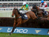 Fringe has another cut at National fences