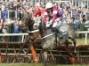 Buveur D'Air battles to Top Novices' Hurdle success