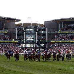 National horses 'come back safe'