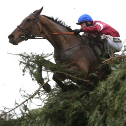 Bookmakers rule in Grand National