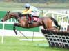Punchestown 2016 Tipping Challenge Result Saturday