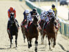 Lingfield Saturday card in limbo