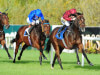 Blue De Vega to take Tercentenary test at Royal Ascot