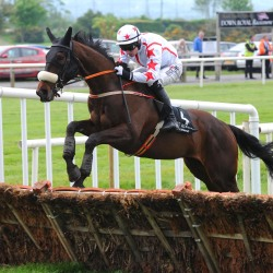 Ascot-bound Wakea opens hurdling account with Down Royal romp