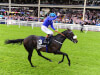 No Royal Ascot going concerns for Awtaad and Kevin Prendergast