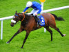 Devonshire to lead Willie McCreery's Royal Ascot challenge