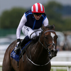 Moviesta out to dazzle in Diamond Jubilee