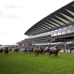 Scoop6 carried forward to Royal Ascot after Hoofalong victory scuppers punters