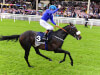 Kevin Prendergast has Awtaad 'better and fitter' for Royal Ascot raid