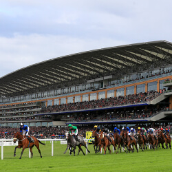 Day one honours go narrowly to punters at Royal Ascot