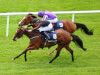 Ballydoyle misses Coronation outing as Jet Setting leads Ascot runners