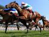 Connections to check ground for Hunt Cup favourite Convey