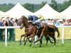 Aidan O'Brien keen to deflect praise to others after 50th Royal Ascot winner
