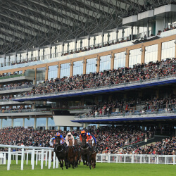 'Gloves are off' for final-day punting battle at Royal Ascot